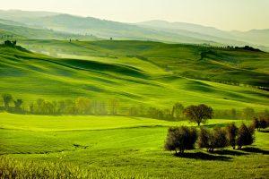 Countryside, San Quirico ´Orcia , Tuscany, Italy